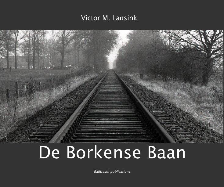 View De Borkense Baan by Victor M. Lansink