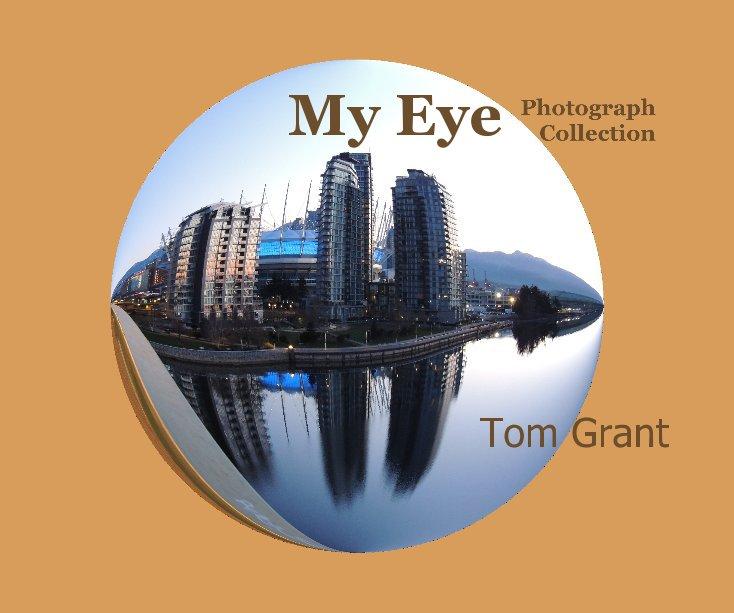 View My Eye by Tom Grant
