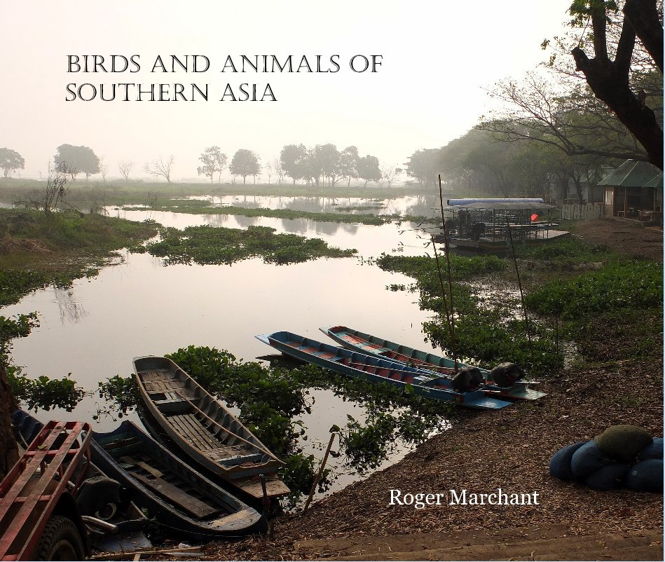 View Birds and Animals of Southern Asia by Roger Marchant