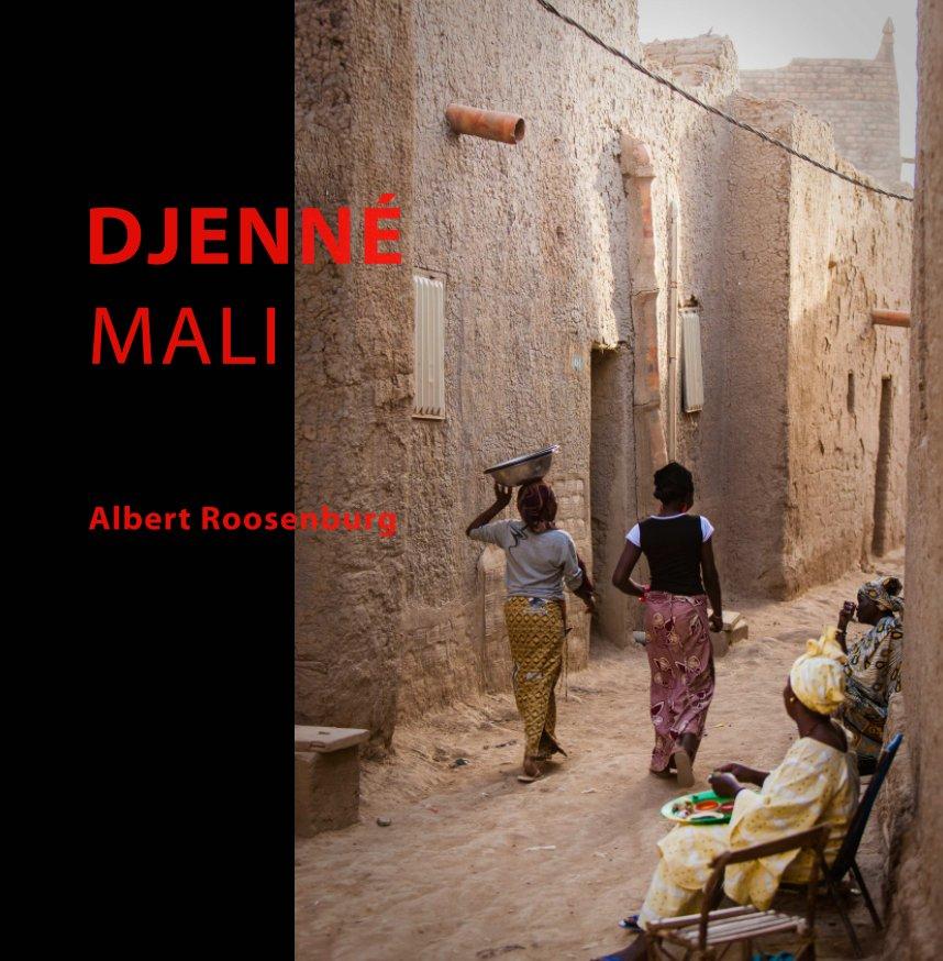 Bekijk Djenné, Mali op Albert Roosenburg