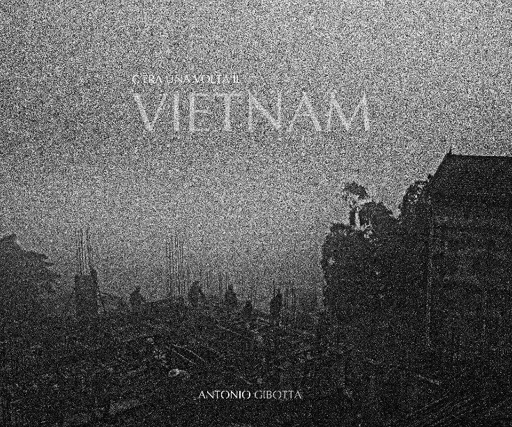 Visualizza C'era una volta il Vietnam di di Antonio Gibotta