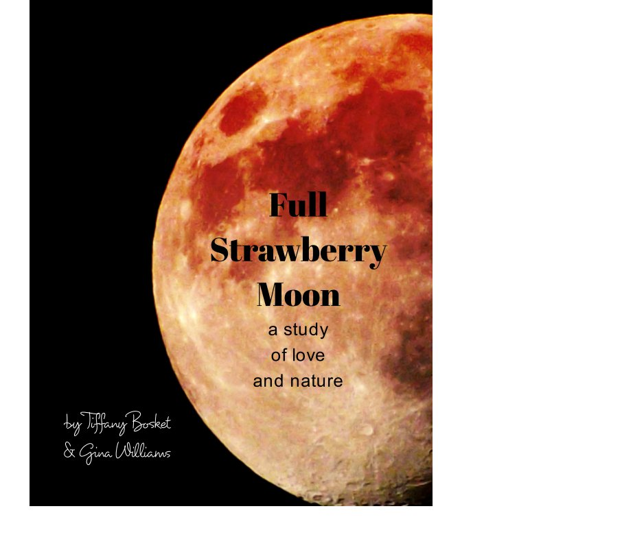 View Full Strawberry Moon by Tiffany Bosket, Gina Williams