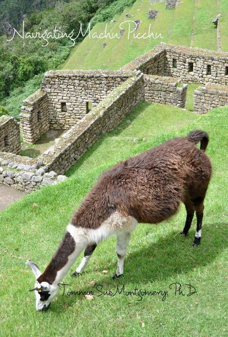 View Navigating Machu Picchu by Tommie Sue Montgomery PhD