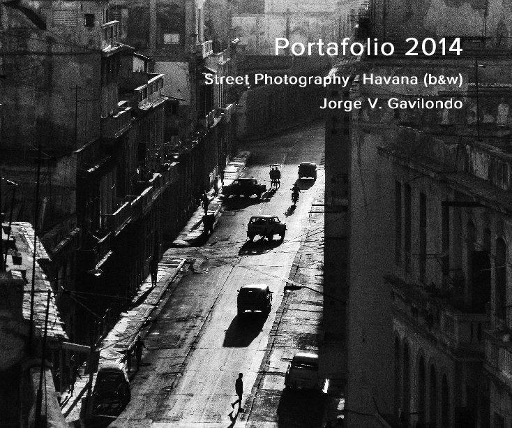 View Portafolio 2014 by Jorge V. Gavilondo