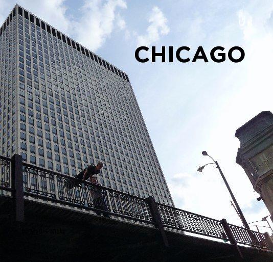 View CHICAGO by Matt + Nikki
