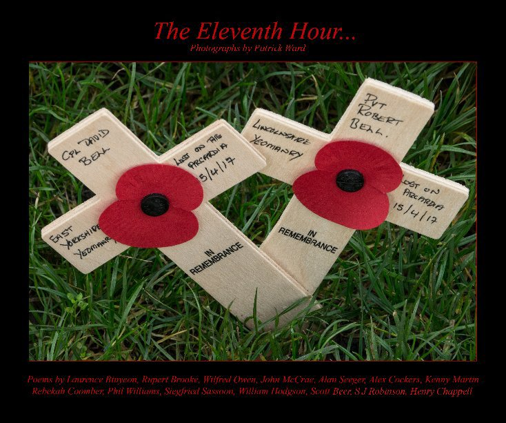 View THE ELEVENTH HOUR by Patrick Ward
