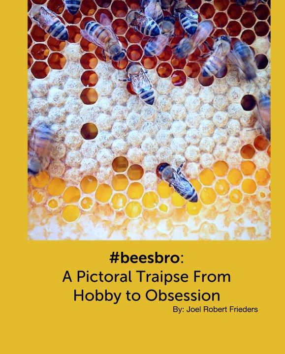 View #beesbro by By: Joel Robert Frieders