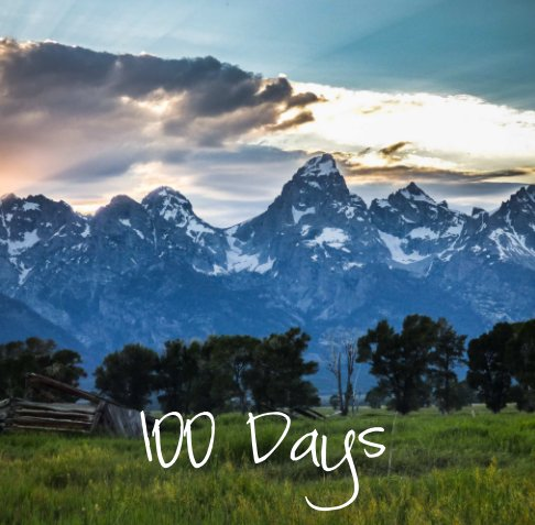 View 100 Days by Mary Hone