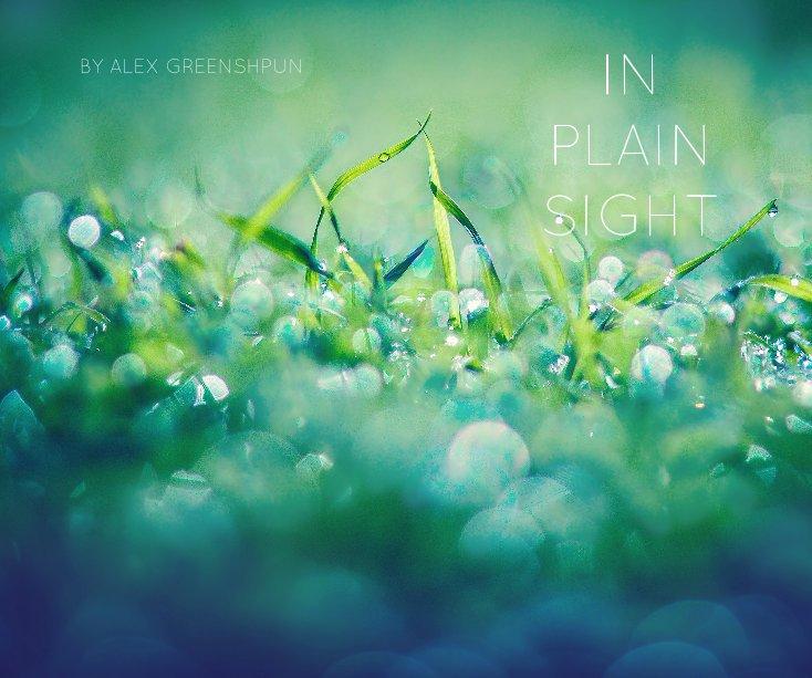 View IN PLAIN SIGHT by ALEX GREENSHPUN