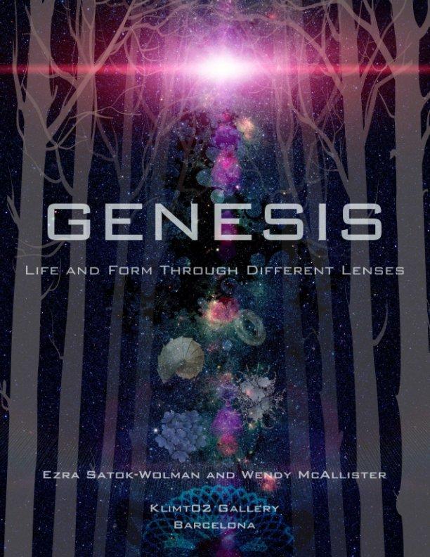 View Genesis by Satok-Wolman, McAllister