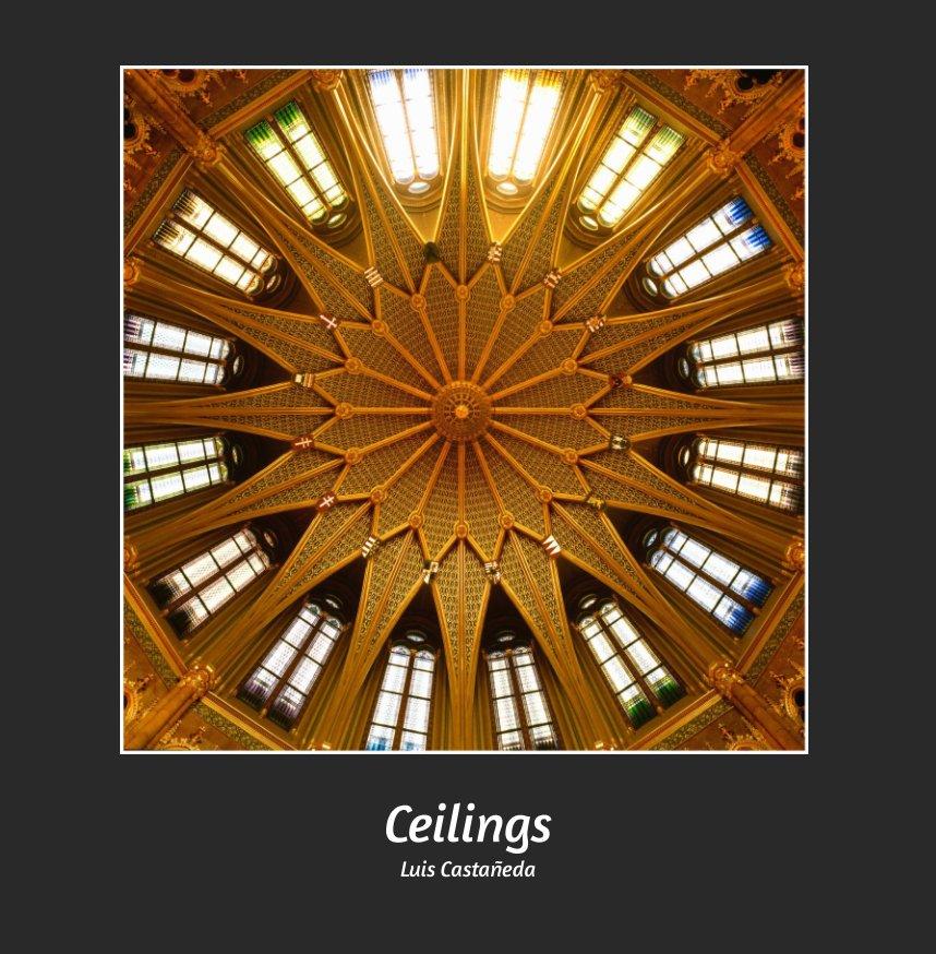 View CEILINGS by LUIS CASTAÑEDA