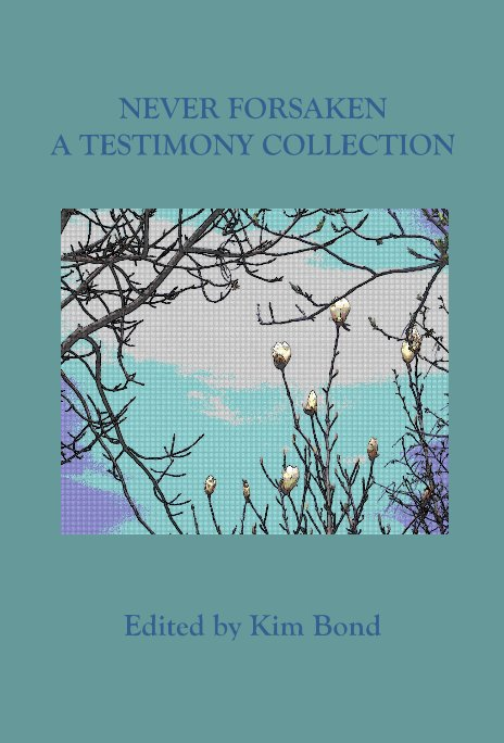 View NEVER FORSAKEN A TESTIMONY COLLECTION by Edited by Kim Bond