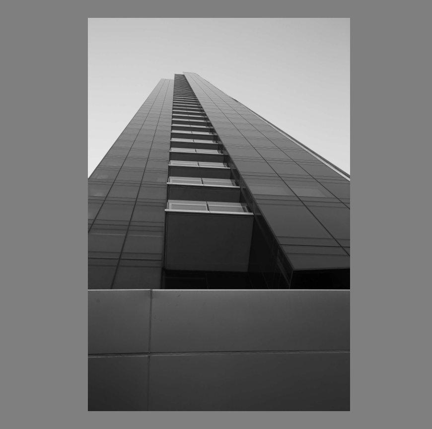 View Brick. Granite. Steel. Glass. by Zach Dunton