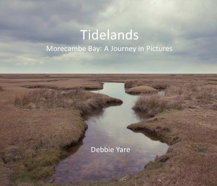 View Tidelands by Debbie Yare