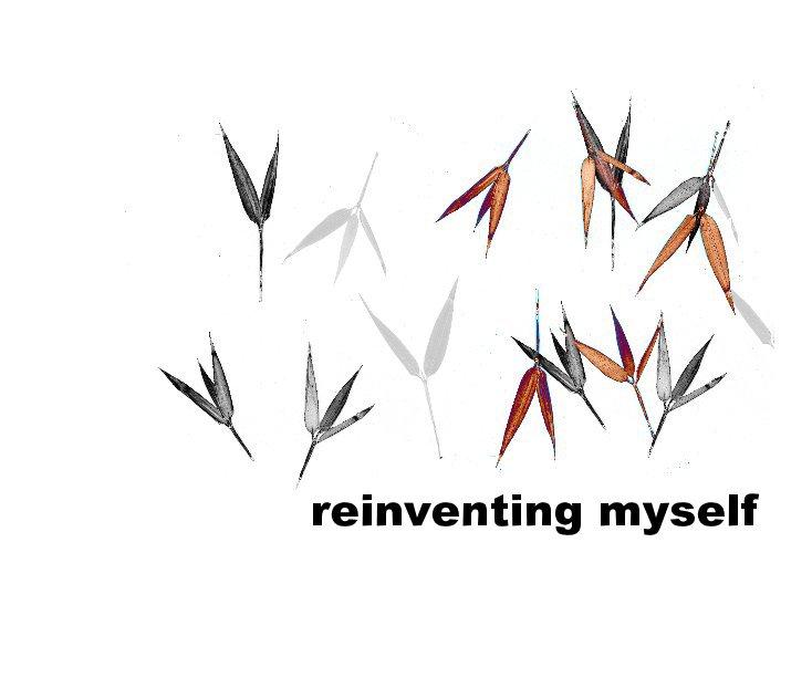 View reinventing myself by barbara seidel