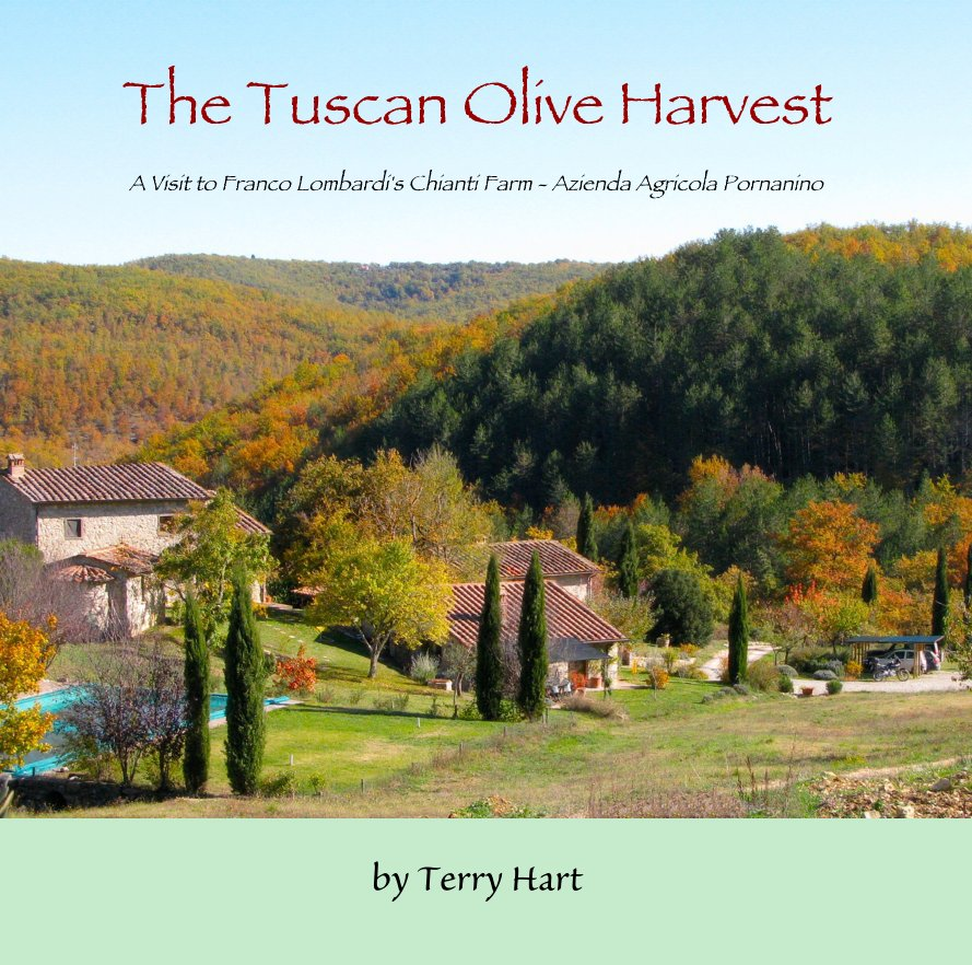 View The Tuscan Olive Harvest by Terry Hart