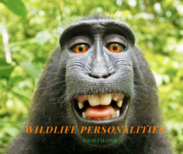 View WILDLIFE PERSONALITIES by David J Slater
