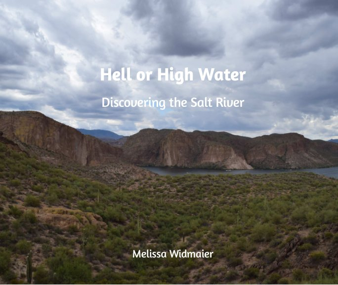 View Hell or High Water by Melissa Widmaier