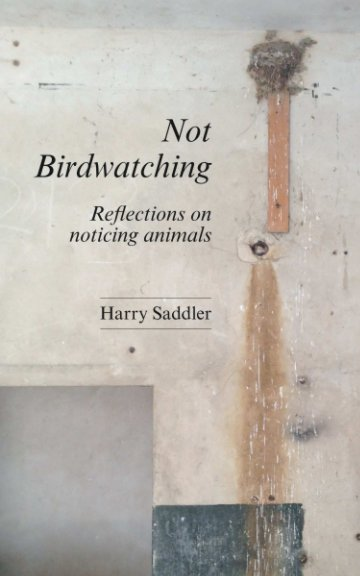 View Not Birdwatching by Harry Saddler