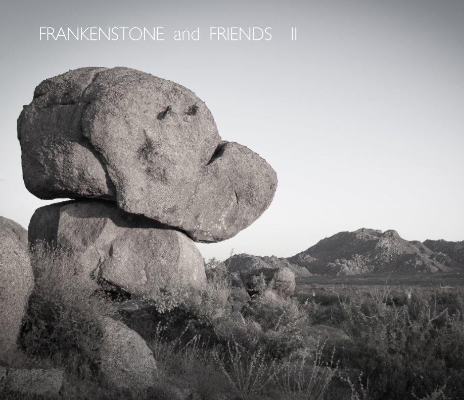 View Frankenstone and Friends II by Marianne Skov Jensen