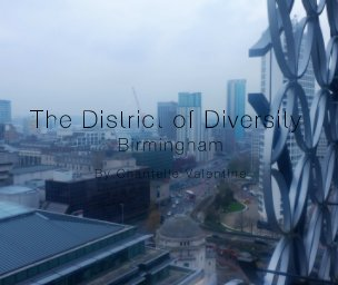 The District of Diversity - Arts & Photography Books photo book