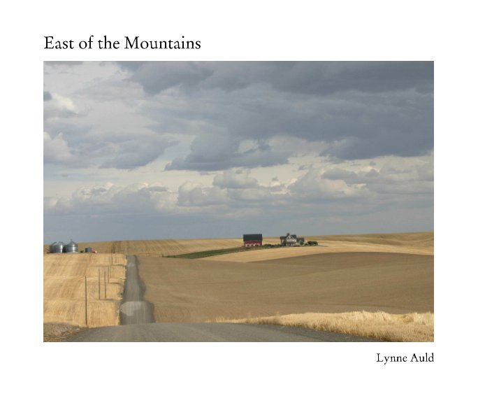 View East of the Mountains by Lynne Auld
