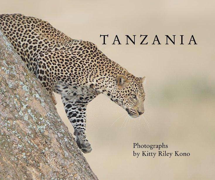 View T A N Z A N I A by Kitty Riley Kono