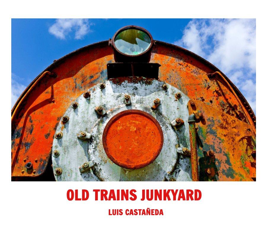 View OLD TRAINS JUNKYARD by Luis Castañeda