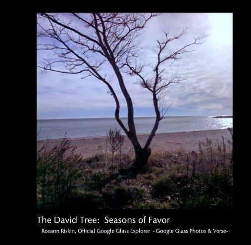 View The David Tree:  Seasons of Favor by Roxann Riskin, Official Google Glass Explorer
