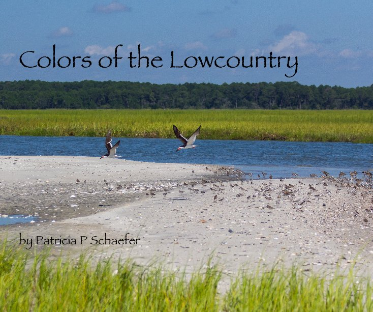 View Colors of the Lowcountry by Patricia P Schaefer by Patricia P Schaefer