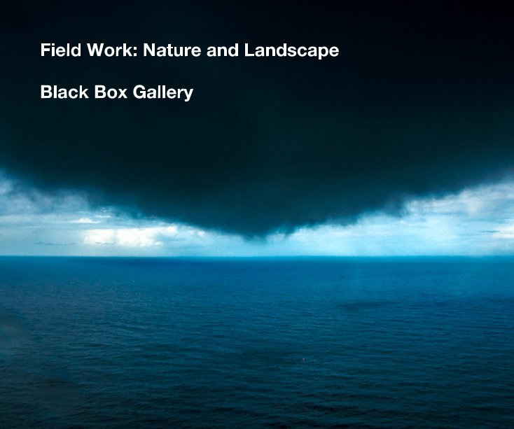 View Field Work: Nature and Landscape by Black Box Gallery
