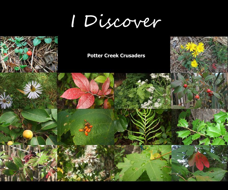 View I Discover by Potter Creek Crusaders