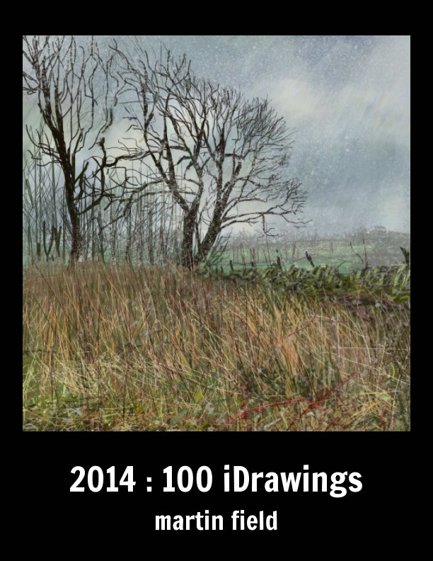 View 2014 :100 iDrawings by martin field