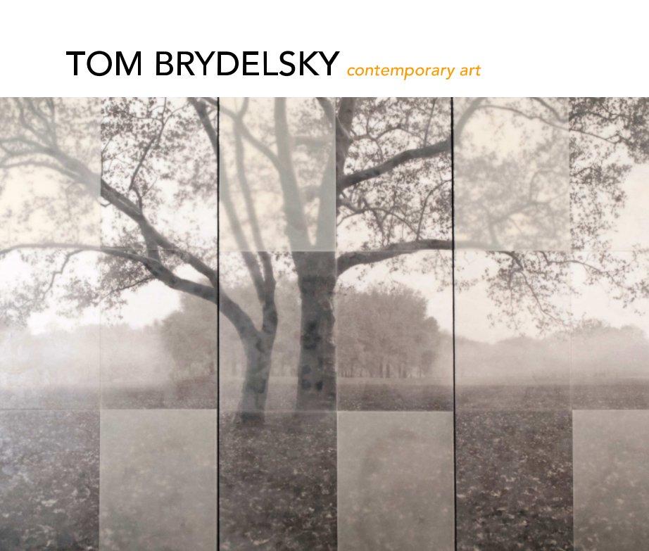 View TOM BRYDELSKY contemporary art by Tom Brydelsky