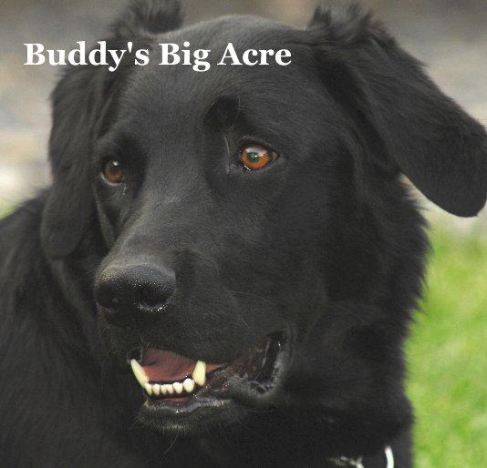 View Buddy's Big Acre by Original Story by Wanda Brown adapted by Karleen Gansberg