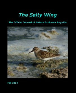 The Salty Wing Fall 2014 - Education photo book