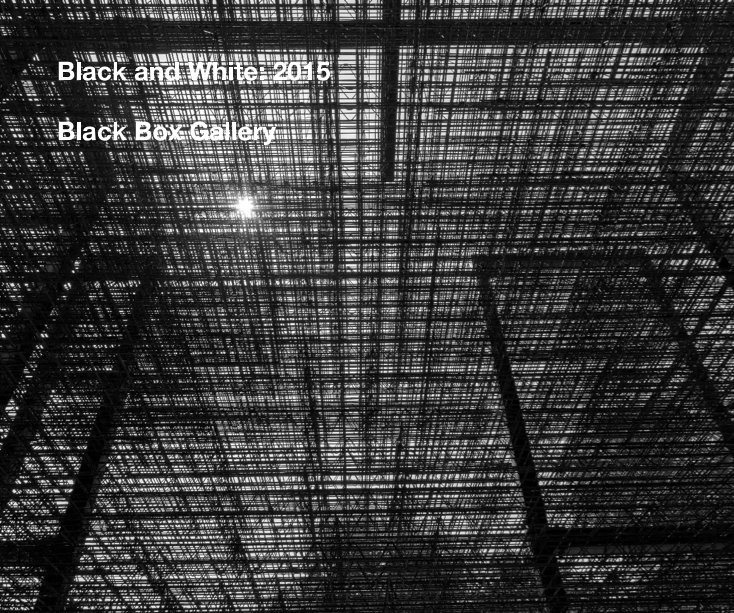 View Black and White: 2015 by Black Box Gallery