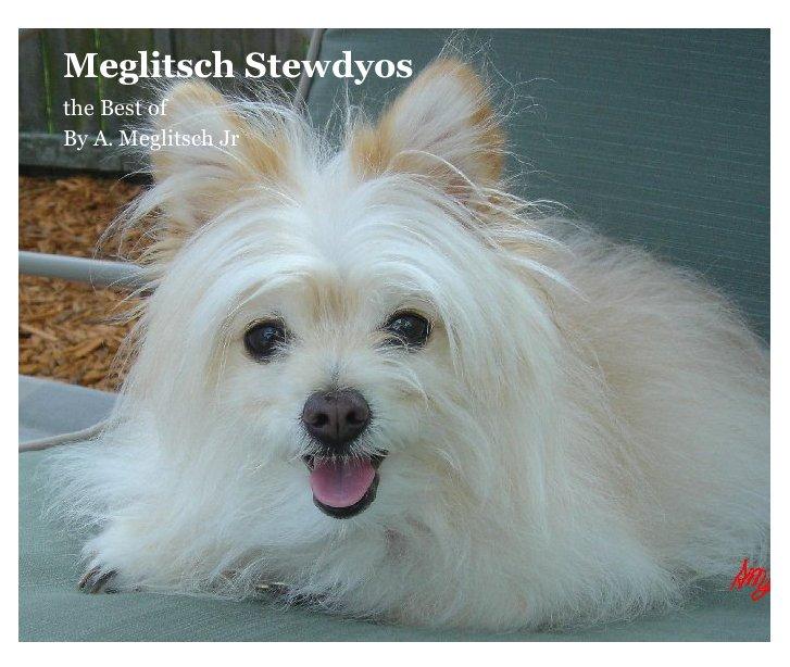 View Meglitsch Stewdyos by A. Meglitsch Jr