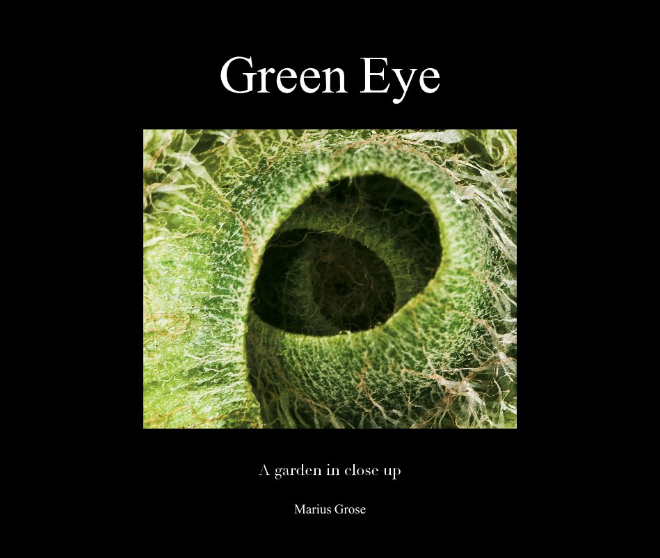 View Green Eye by Marius Grose