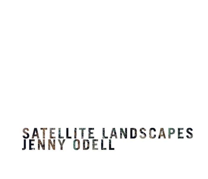 View Satellite Landscapes by Jenny Odell