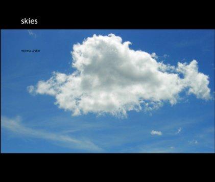 skies book cover