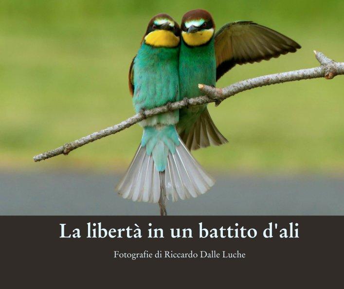 Visualizza La libertà in un battito d'ali di Fotografie di Riccardo Dalle Luche