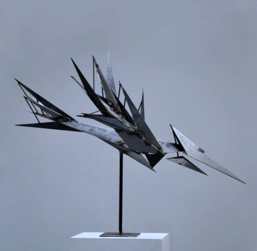 View The Oozlum Bird by David Evan Mackay