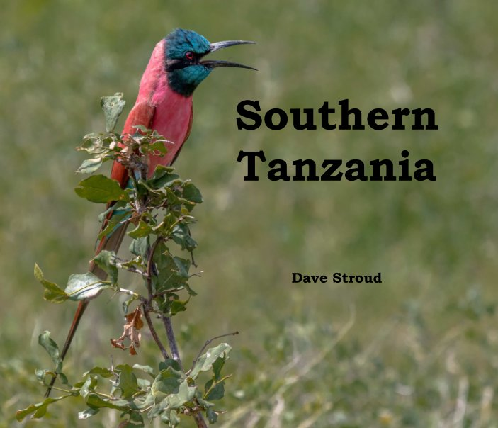 View Southern Tanzania by Dave Stroud