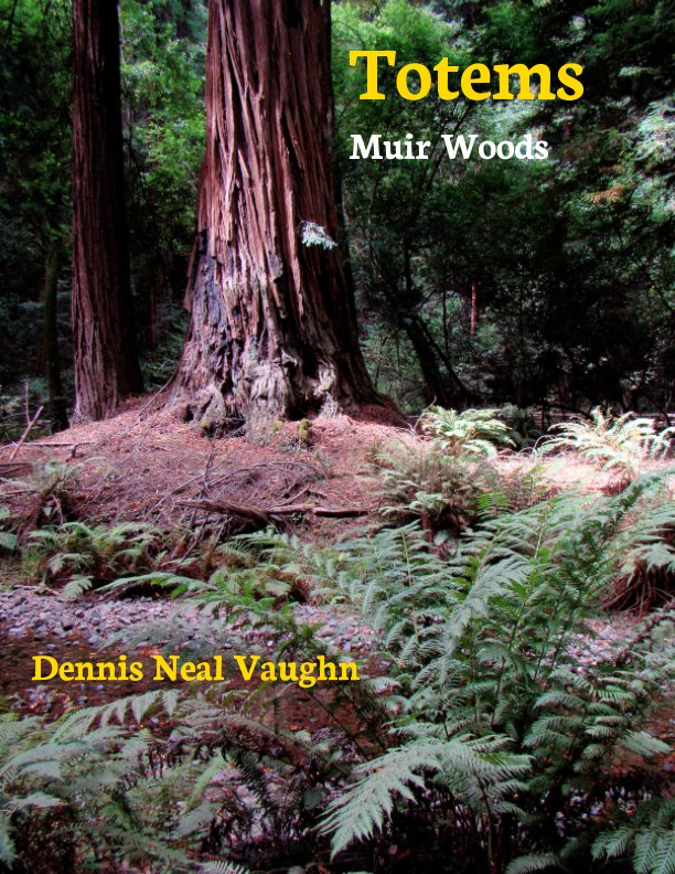 View Totems by Dennis Neal Vaughn