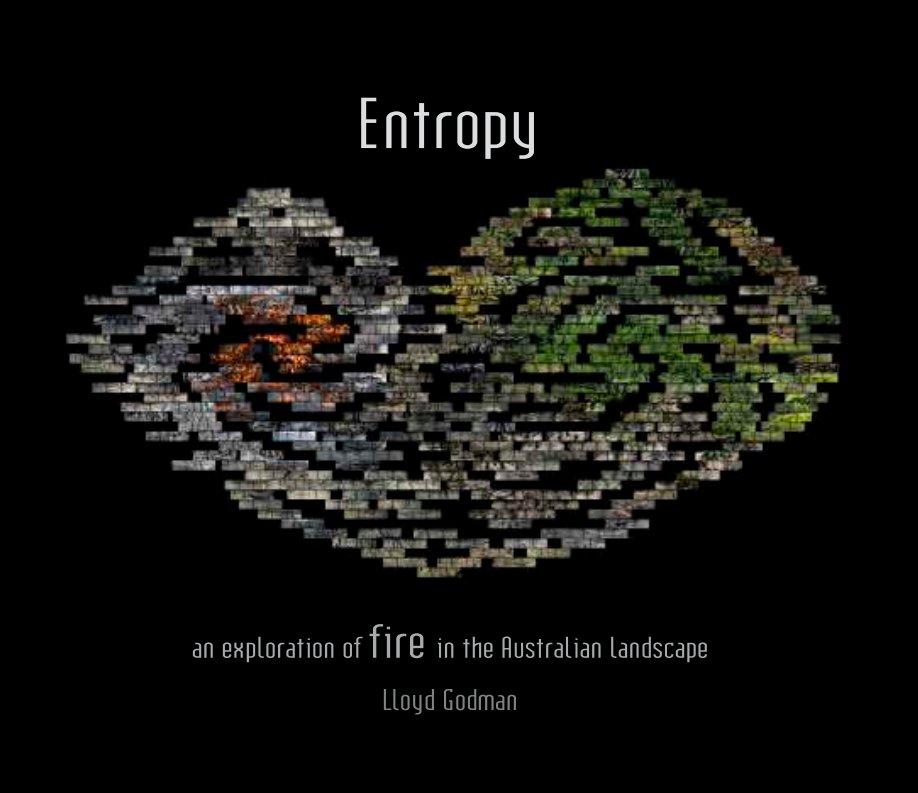View Entropy by Lloyd Godman