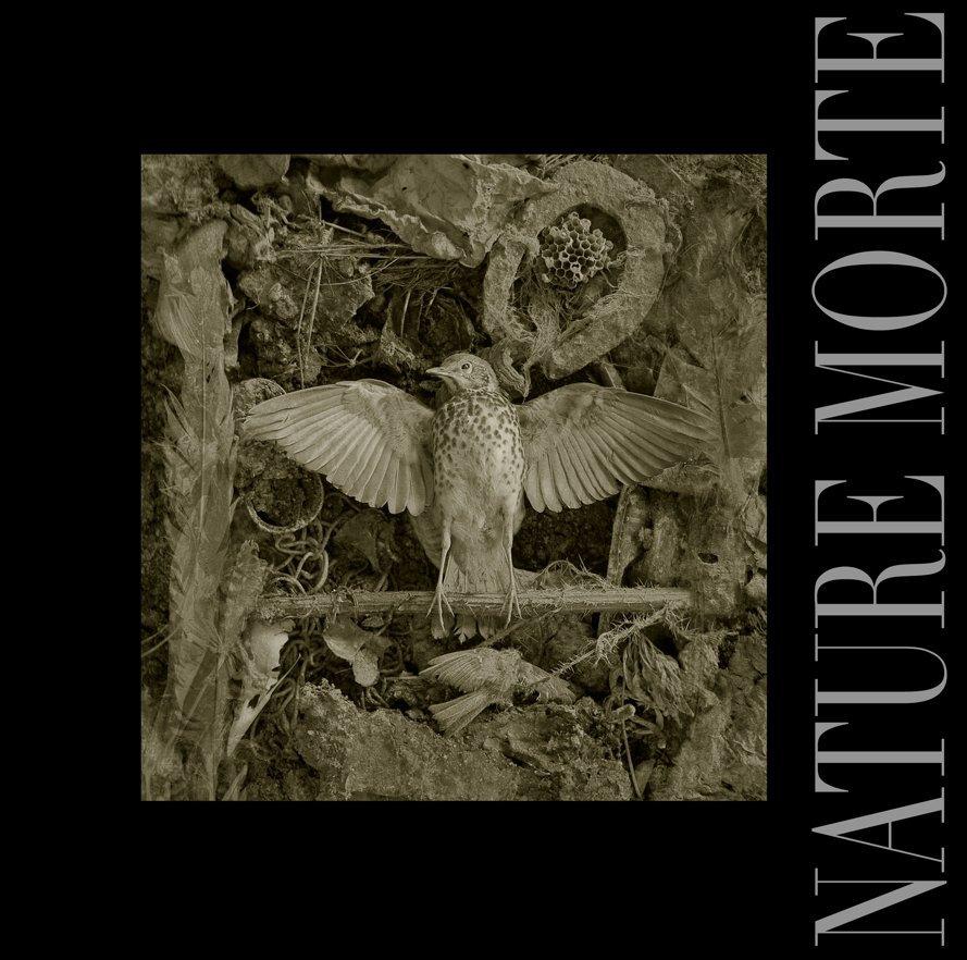 View Nature Morte by Douglas McBride
