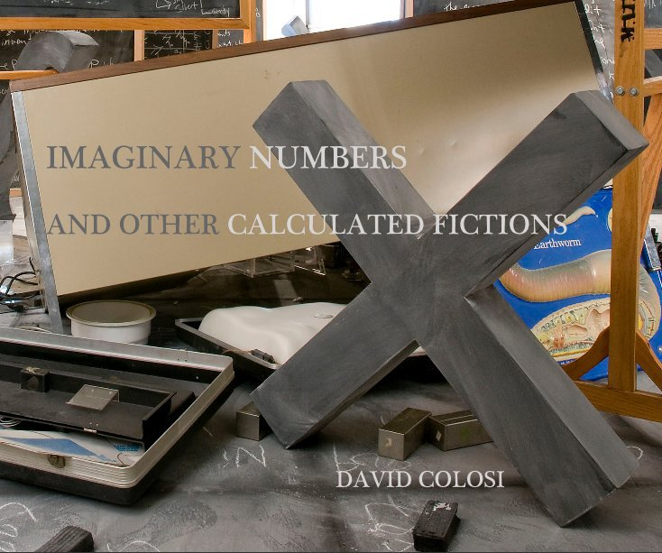 View IMAGINARY NUMBERS AND OTHER CALCULATED FICTIONS by DAVID COLOSI