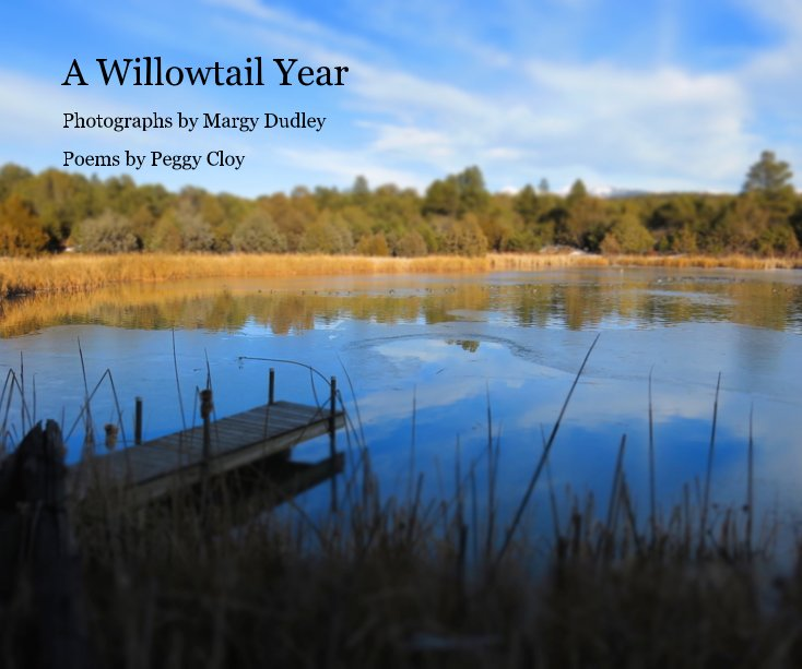 View A Willowtail Year by Poems by Peggy Cloy
