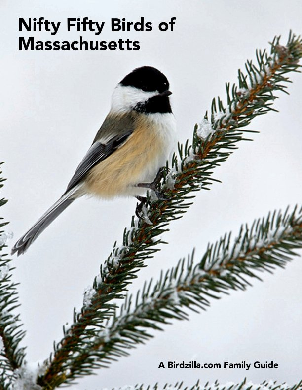 View Nifty Fifty Birds of Massachusetts by Sam Crowe